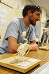 Daniel Urban, a grad student from the School of Integrative Biology's Animal Biology Department