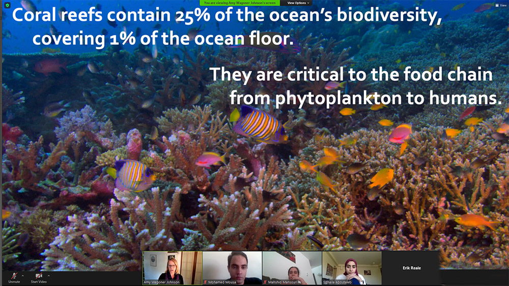This slide Johnson presented during class is an example of the Assertion/Evidence style; the statements at the top are her assertion; the large image of a coral reef and the many sea creatures inhabiting it is her evidence.